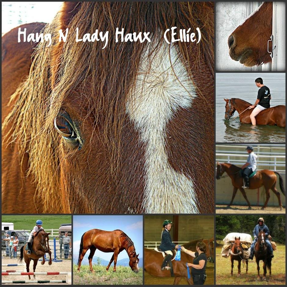 Hang N Lady Haux
