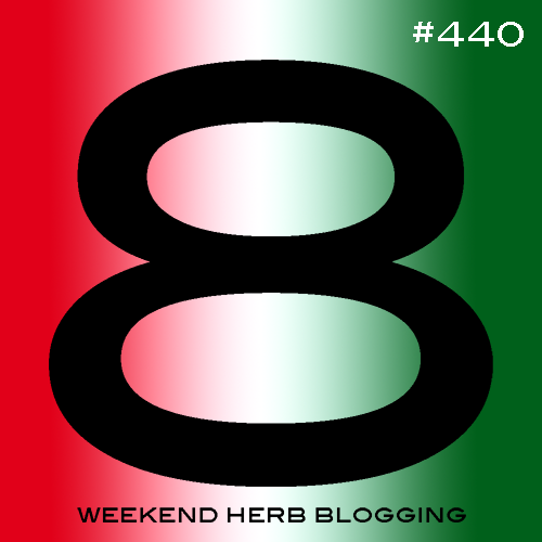 Weekend Herb Blogging #440 Hosting