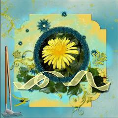 lo 4  How my garden grows..