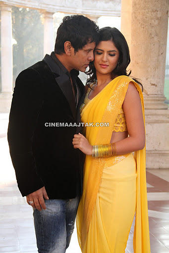 Deeksha Seth Hot in Yellow Saree1 - Deeksha Seth In Veedinthe Movie New Images
