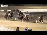 at yarışı izlerken sevişen çift