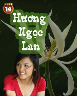 Hương Ngọc Lan full HD trọn bộ online 2013 Trên Kênh VTV3 - Phim Việt Nam