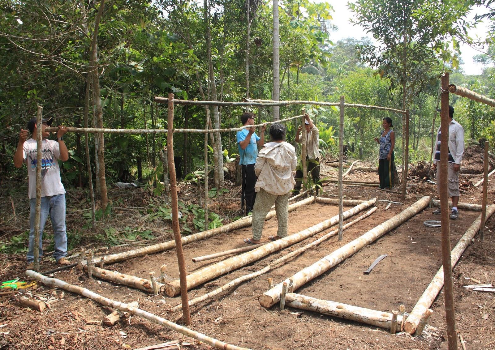 Pastoral de la tierra vicariato apost lico de yurimaguas for Construccion de viveros