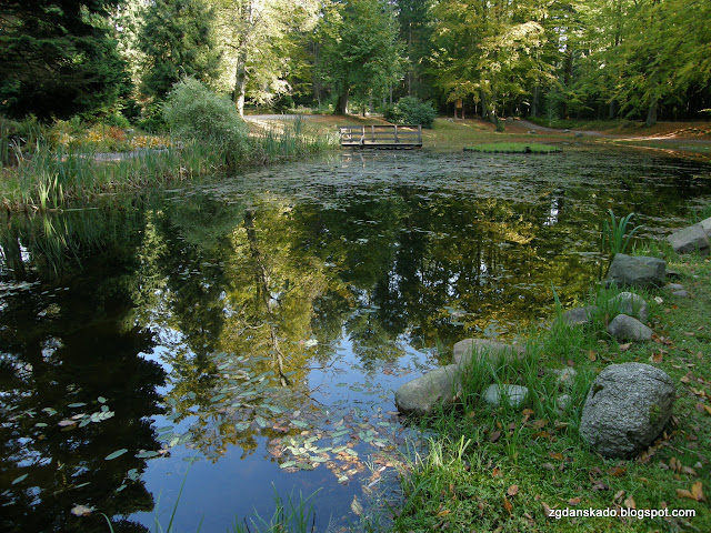 Arboretum - Wirty