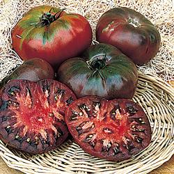 http://3.bp.blogspot.com/-ukaIiq-LNDY/UA2NY4GPDJI/AAAAAAAAANc/829RAp5vVg8/s1600/cherokee-purple-tomatoes.jpg