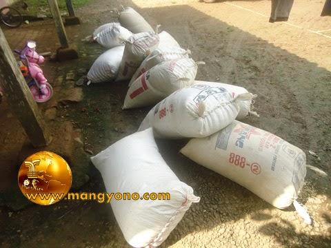 Harga gabah kering simpan di tingkat petani saat ini berkisar Rp 6.000 per kg.