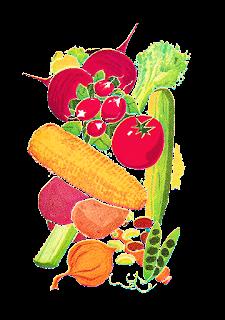 digital vegetable images