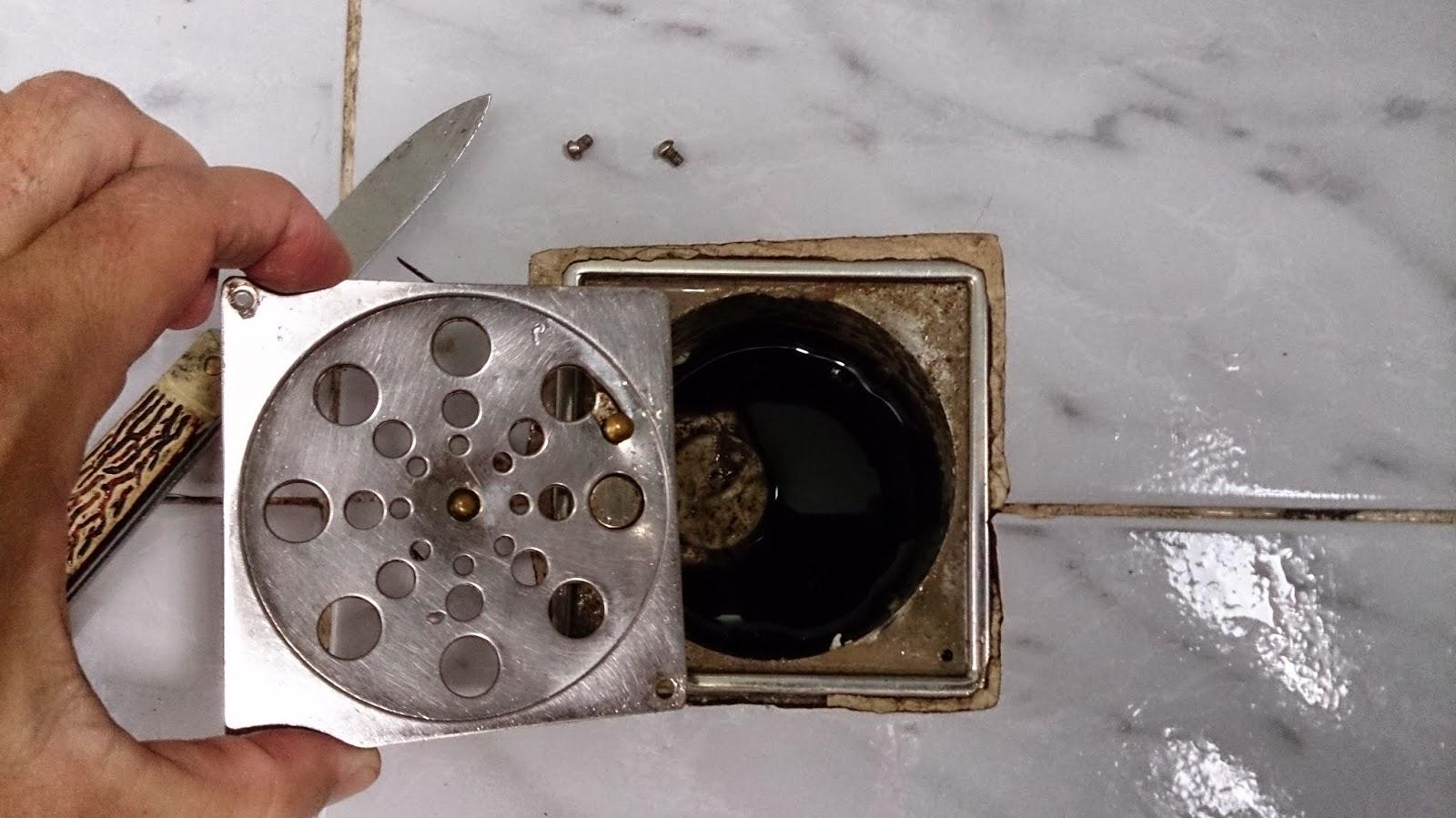 Gambiarra Newton Almeida: Desentupindo : Limpando o Ralo do Banheiro #8A5D41 1600 899