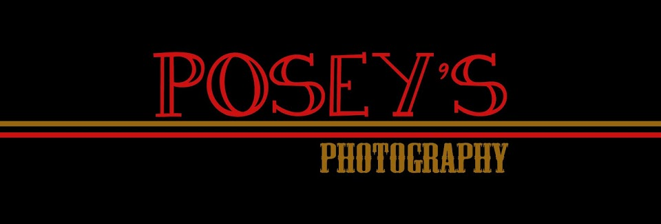 Posey's Photography
