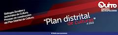 PLAN DISTRITAL