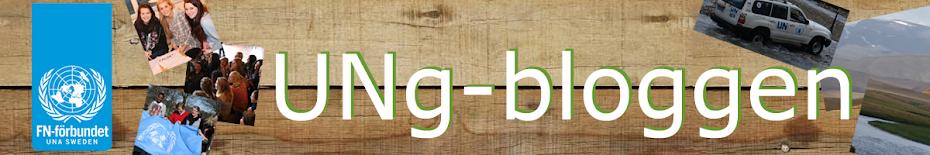 UNg-bloggen