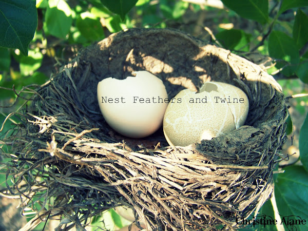 Nest Feathers and Twine