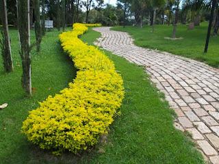 Capacitação em paisagismo e jardinagem é realizada em Palmas