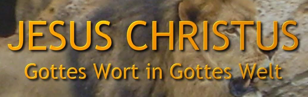 JESUS CHRISTUS, GOTTES WORT IN GOTTES WELT