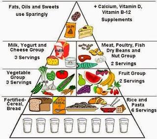 Makanan sehat Bagi Ibu Hamil Muda