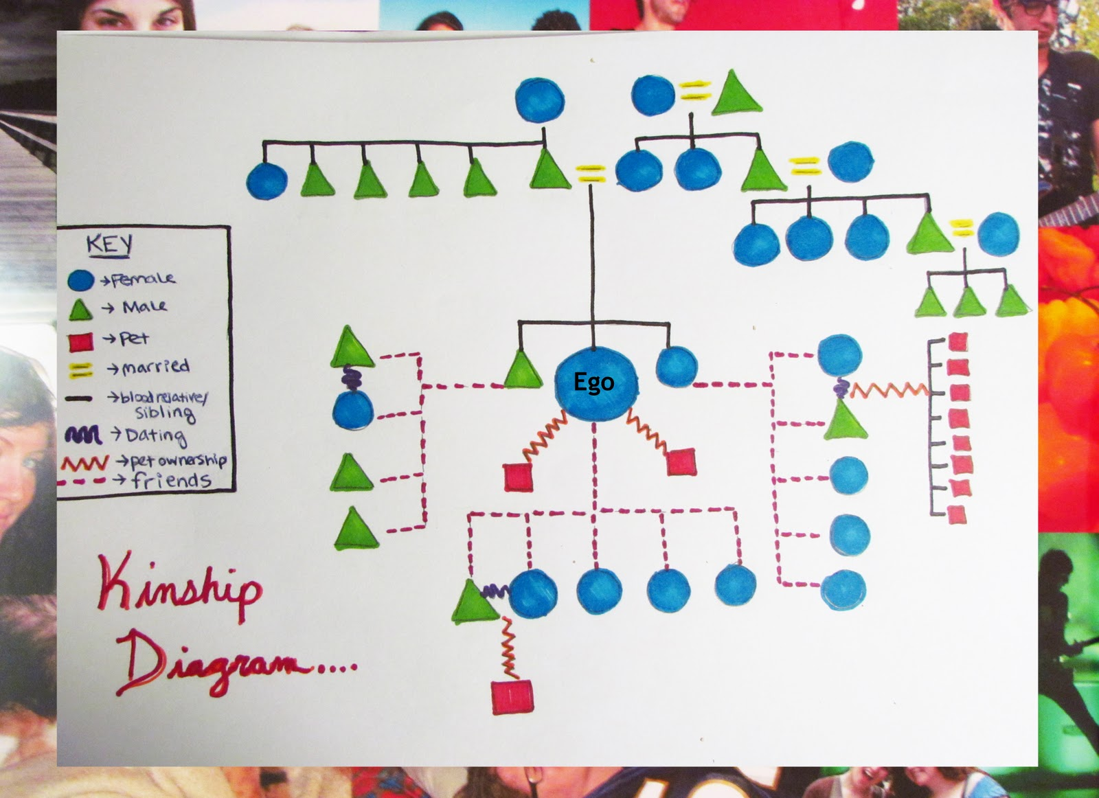 Lovely ... Kinship Chart Template By A Tabula Rasa Kinship Diagram Amazing Ideas