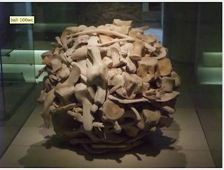 National Museum of Scotland in Edinburg