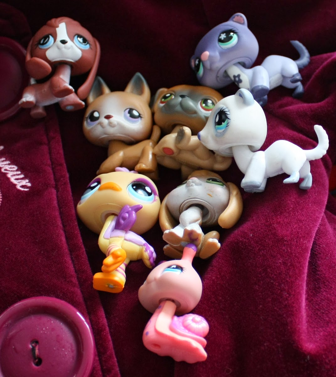 2015 littlest petshop finds
