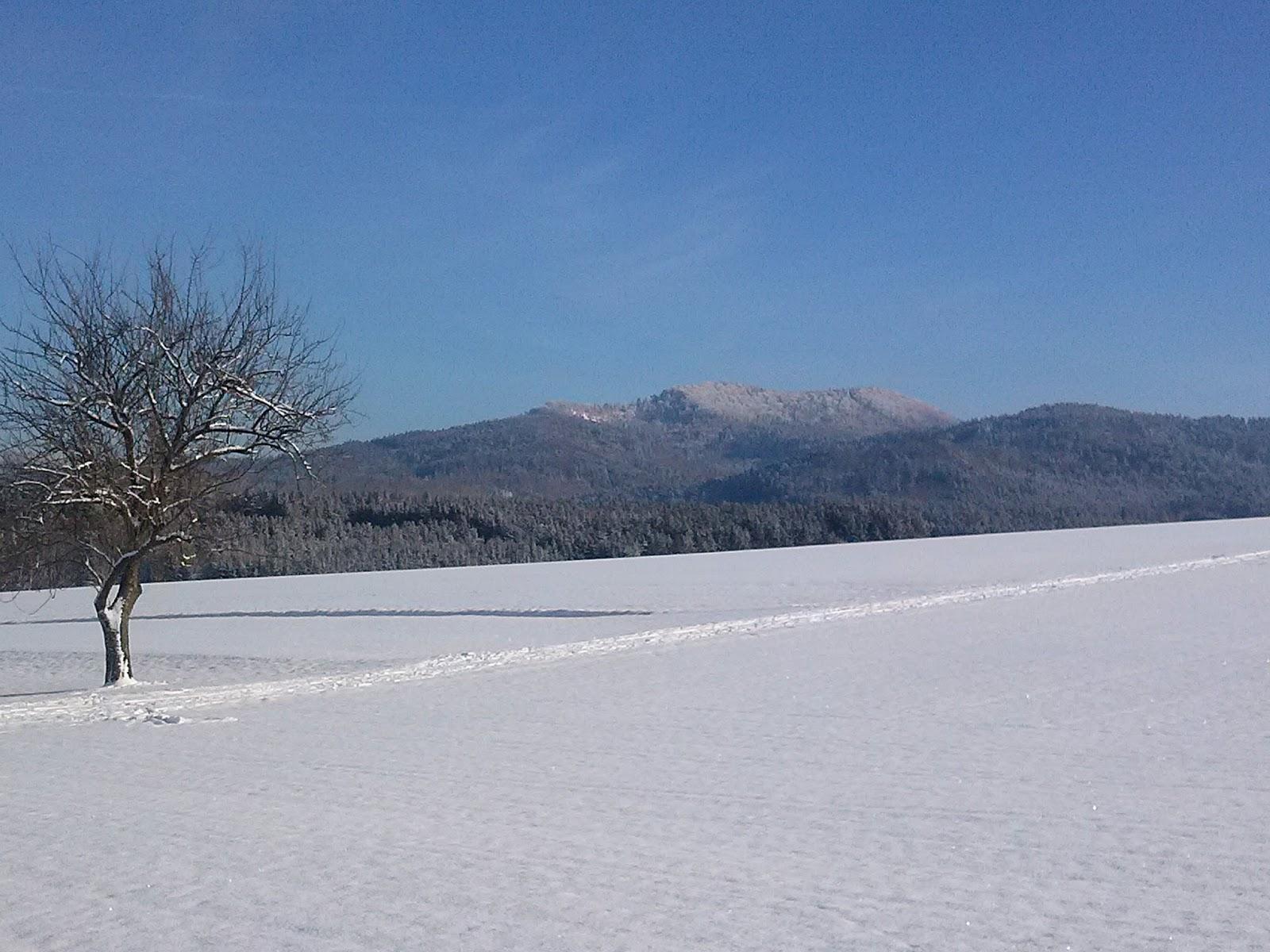 Barfu im alltag mein erster l ngerer schneespaziergang for Boden winter 2016