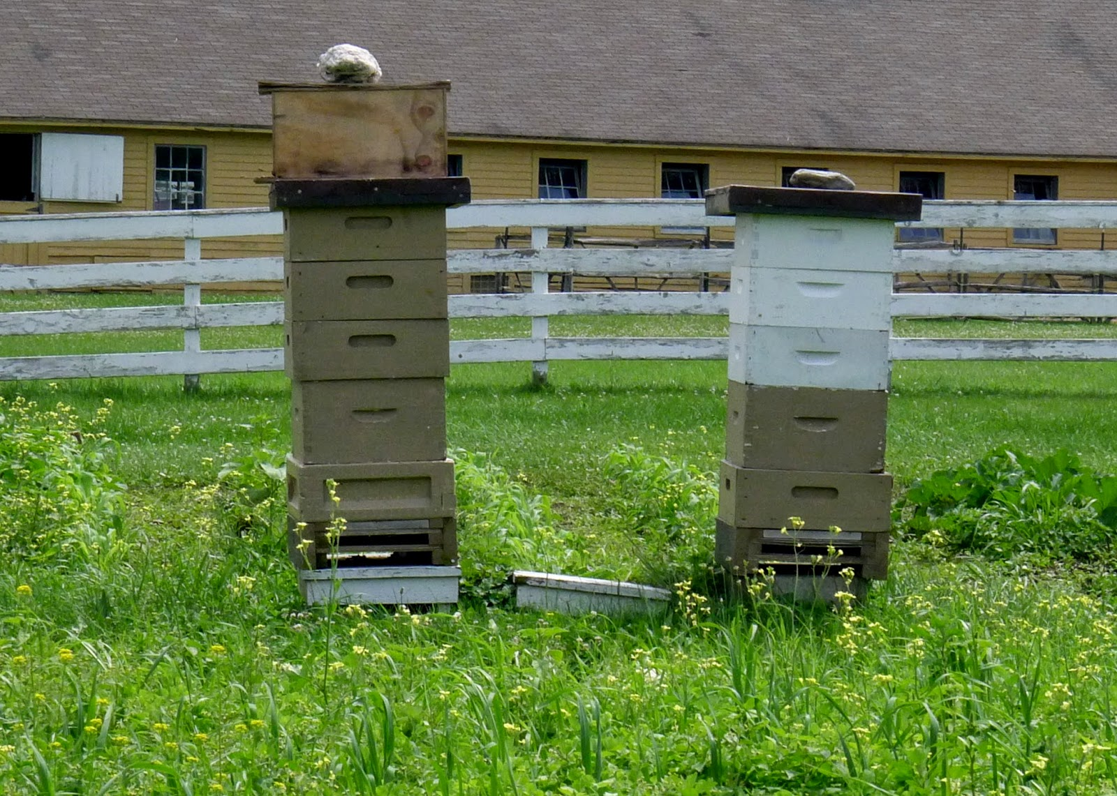 Hancock Shaker Village Bee Hives