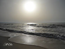 Czekoladowe morze