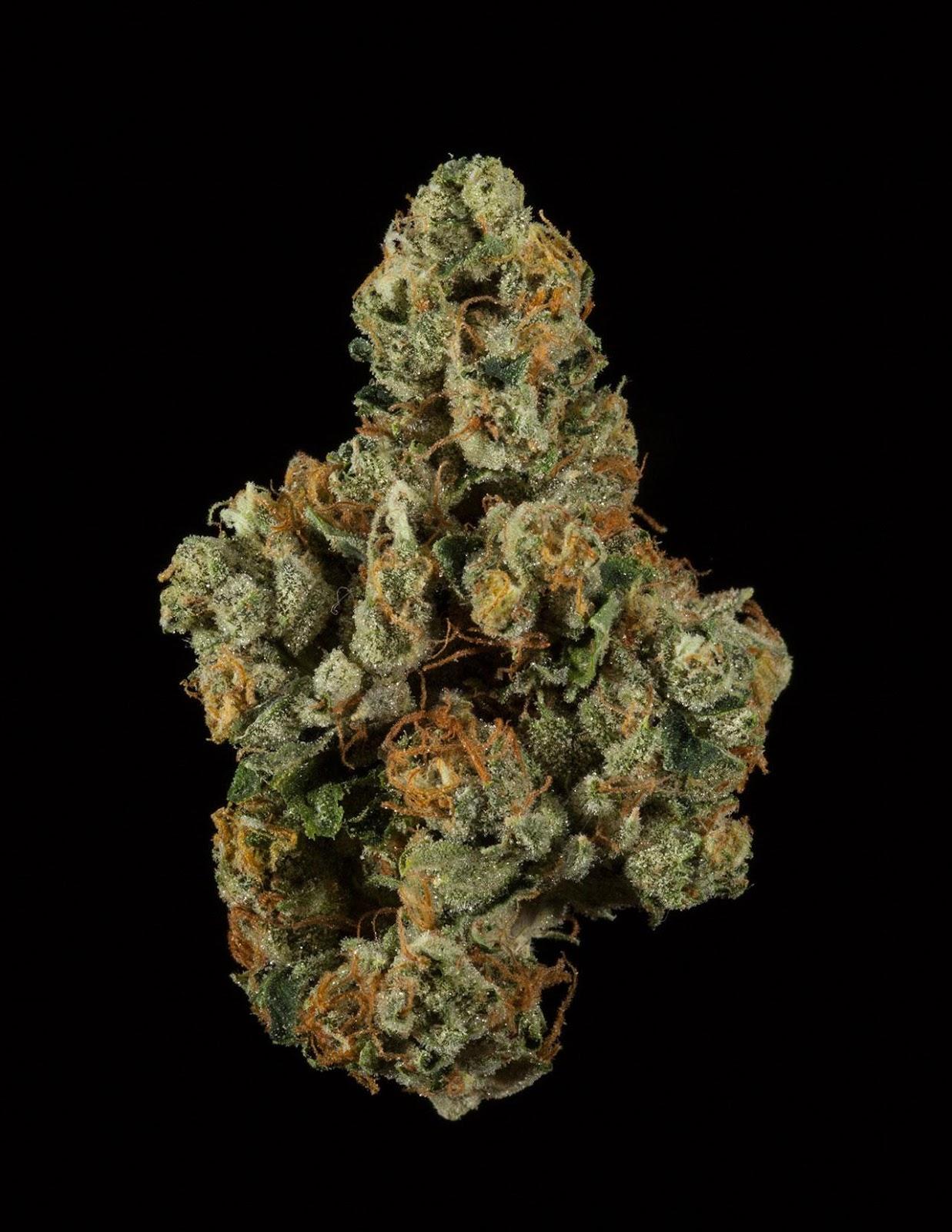 Life is Good OG | #Marijuana