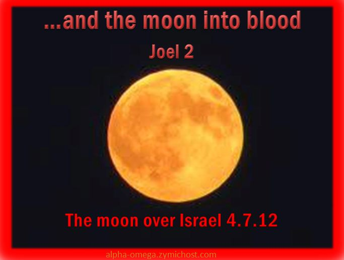 My Daily Walk With Jesus Christ Blood And Fire And