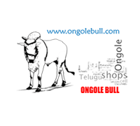 Ongole Capital of Andhra Pradesh