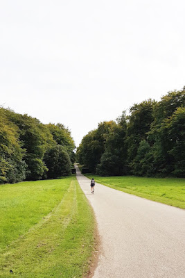 Cycling in the Devon countryside - UK travel blog