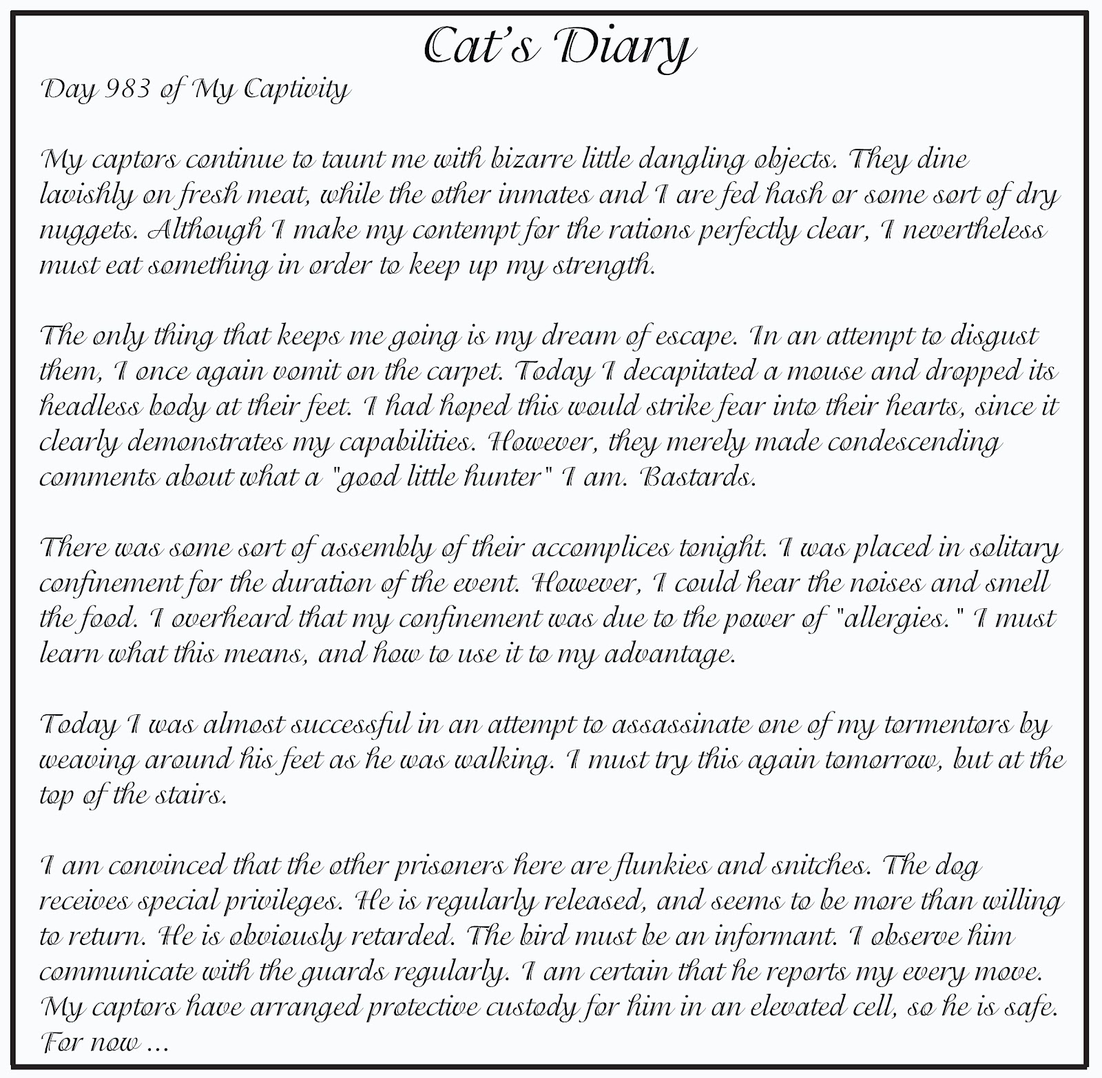 Cat Vs Dog Diary Entry