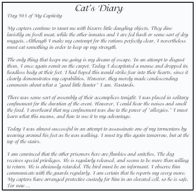 Cat Vs Dog Diary Youtube