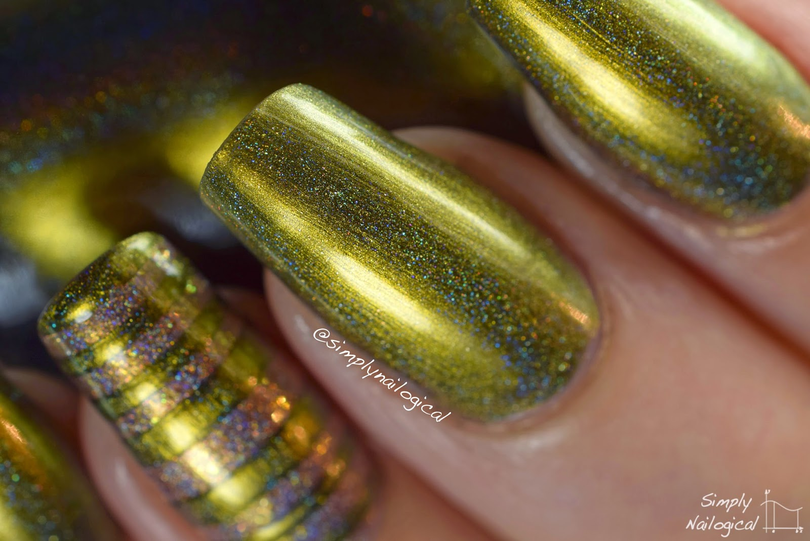 Bishop (H) - ILNP Fall 2014 collection
