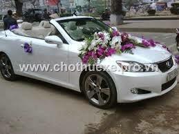 Cho thuê xe cưới mui trần Lexus IS 250C giá ưu đãi tại Hà Nội 1
