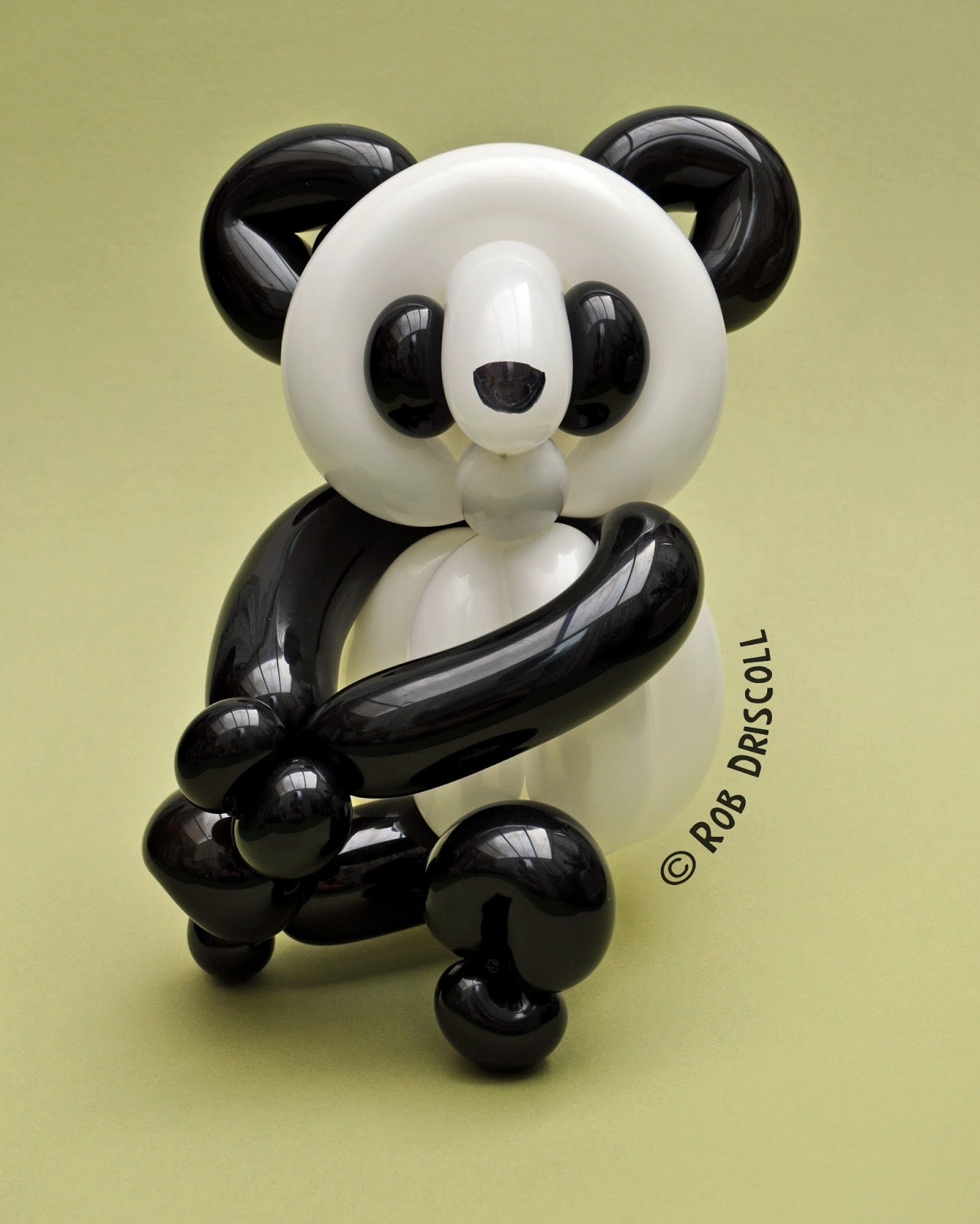 my daily balloon 8th june panda two
