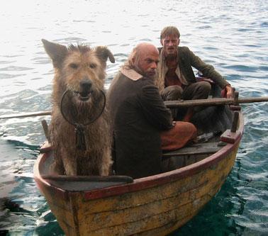 Caribbean Island Dog Rescue