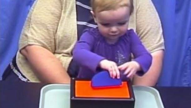 Bebés sabem mais de matemática do que se pensava (com video)