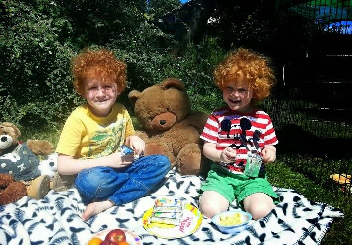 Barny Bear's Little Adventure - Teddy bears picnic with fruit and snacks