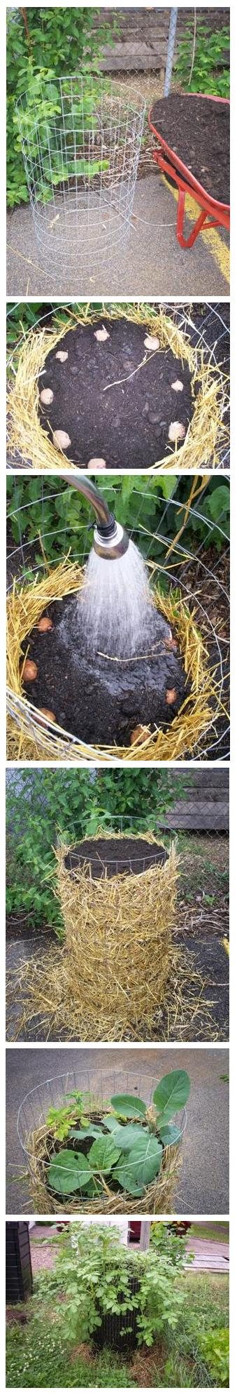 Make your own potato tower