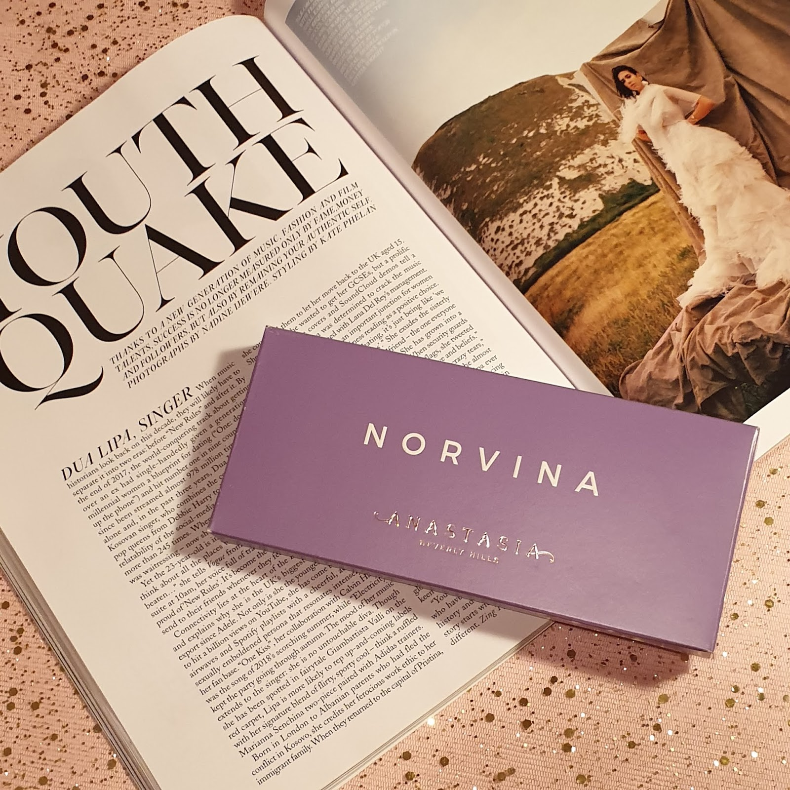 ABH NORVINA PALETTE REVIEW