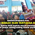 Kempen Makan Ikan Terpaksa Diadakan di Kawasan Nahas QZ8501 Kerana... (5 Gambar)