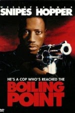 Watch Boiling Point (1993) Megavideo Movie Online
