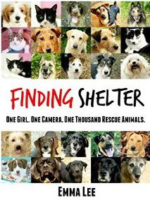 French Village Diaries book review Finding Shelter Emma Lee animal rescue Poitou-Charentes