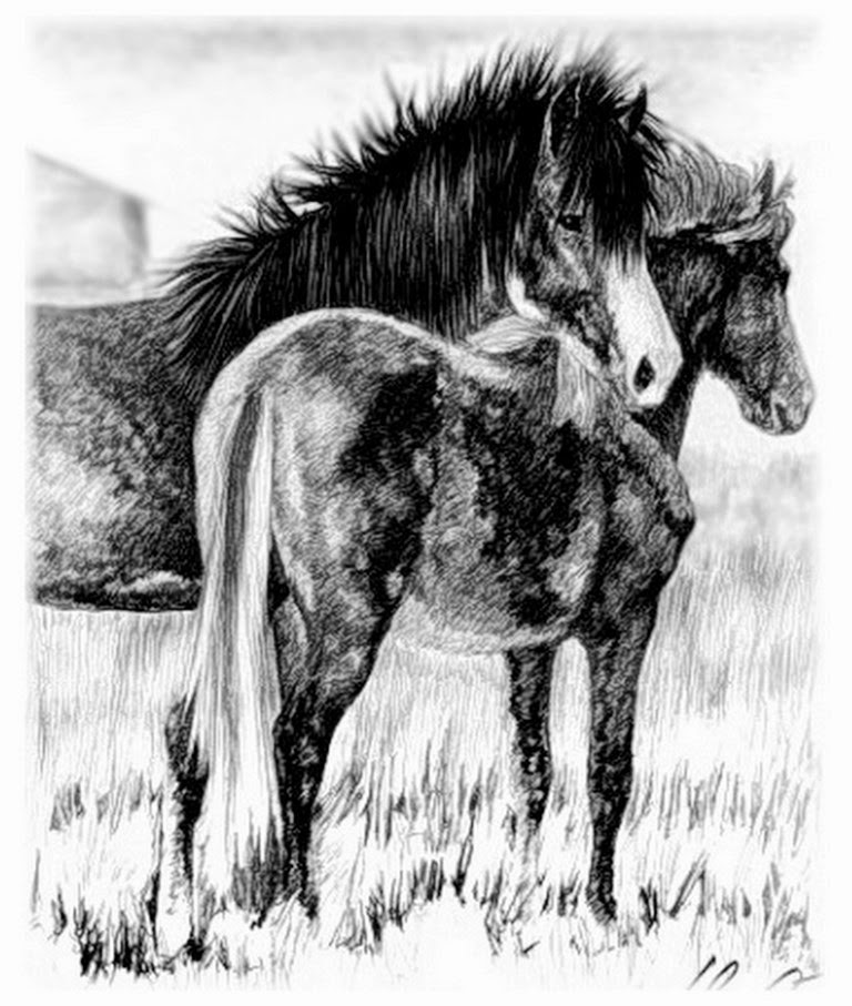 caballos-en-pintura-realista-a-carboncillo