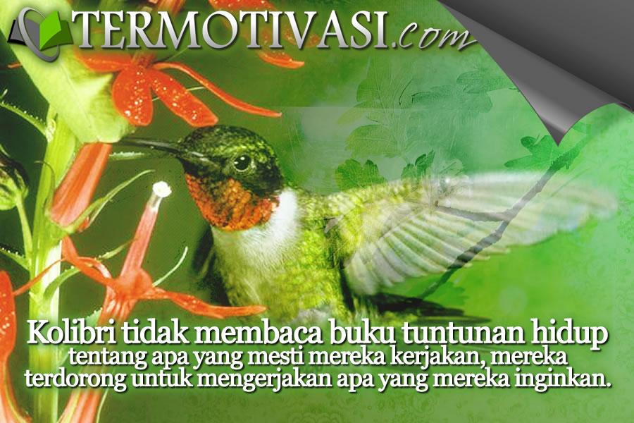 Fabel Motivasi - Ming Ming si Kolibri Petualang