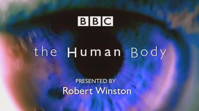 Capitulos de: El cuerpo humano