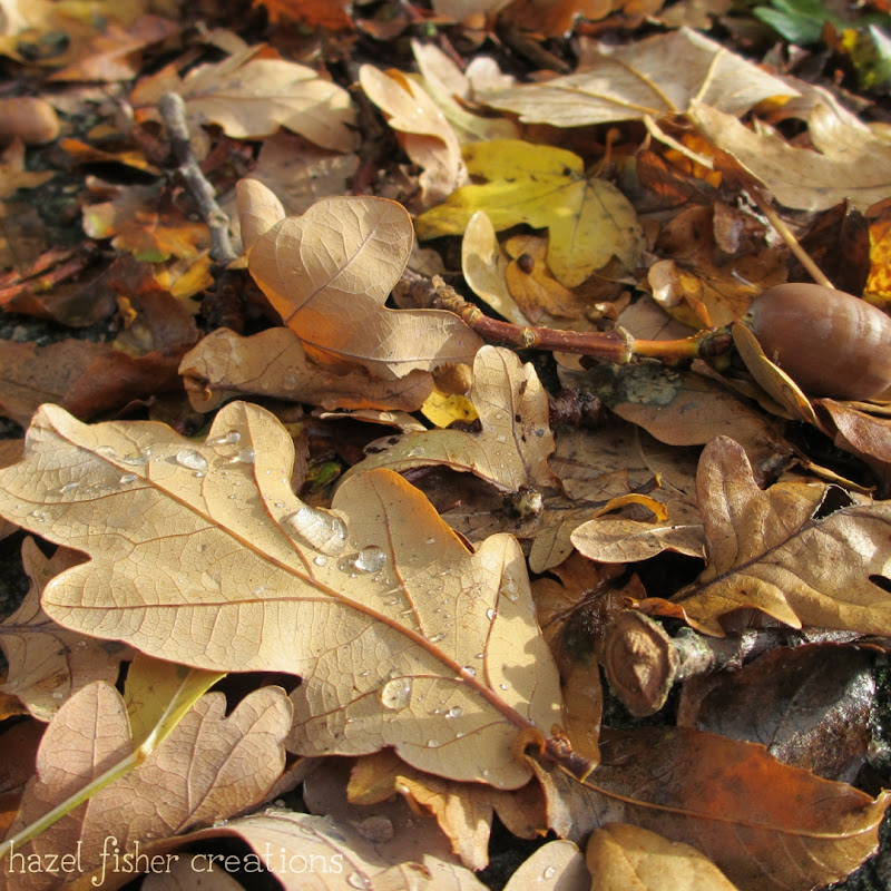 Autumn Leaves photograph hazelfishercreations