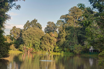 Lake @ Wat Umong