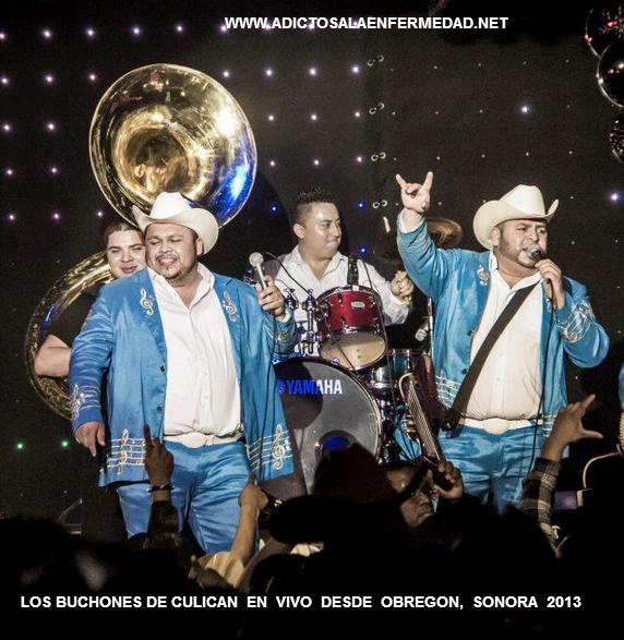 Los Buchones De Culiacan - En vivo desde Obregon CD Album 2013 - Descargar Disco