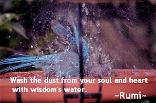 Soul Quotes, Wash the dust from your soul, Rumi Quotes on Soul