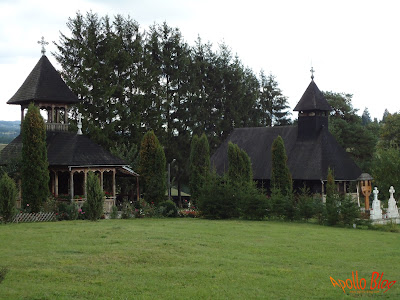 Manastirea Doamnei Toplita